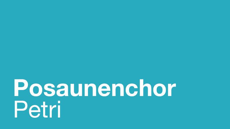 Beitragsbild zu Immaterielles Kulturerbe in Deutschland – die Posaunenchöre